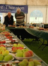 Judging the Autumn Flower Show